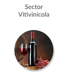 new_sector_vitivini